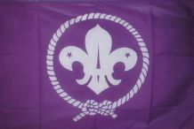 SCOUTS (PURPLE) - HAND WAVING FLAG (MEDIUM)
